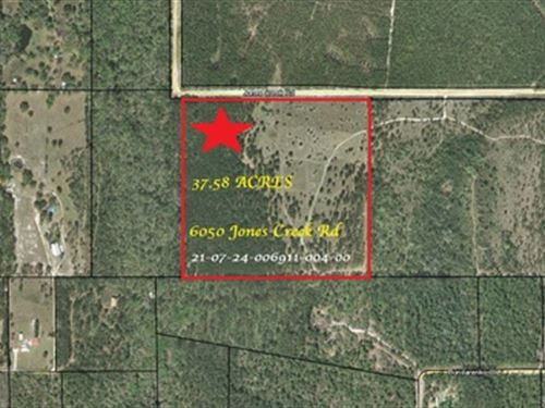 37.6 Acres In Clay County, A-137 : Keystone Heights : Clay County : Florida