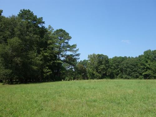 Established Pasture With Homesite : Blythewood : Richland County : South Carolina