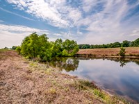 Remarkable 271 Acre Farm : Cumberland Furnace : Dickson County : Tennessee