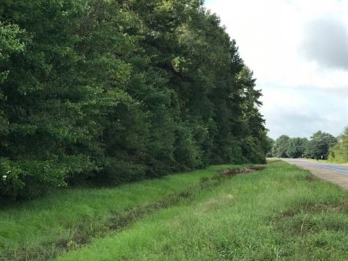 10 Acres Hwy 27 : Tylertown : Walthall County : Mississippi