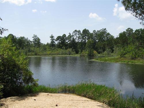 49229 Hwy 60 : Franklinton : Washington Parish : Louisiana