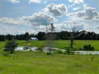 House, Pond, And Acreage Near Buen : Buena Vista : Marion County : Georgia