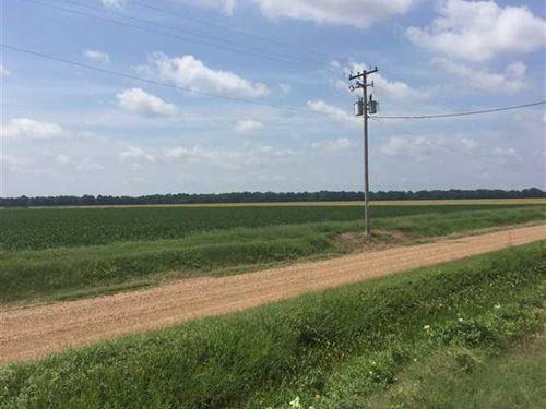 Wheatly Moro Farm : Wheatley : Lee County : Arkansas