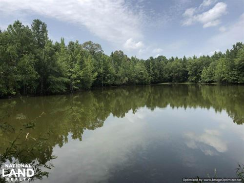 Recreational Tract With Stocked Lak : Lexington : Holmes County : Mississippi