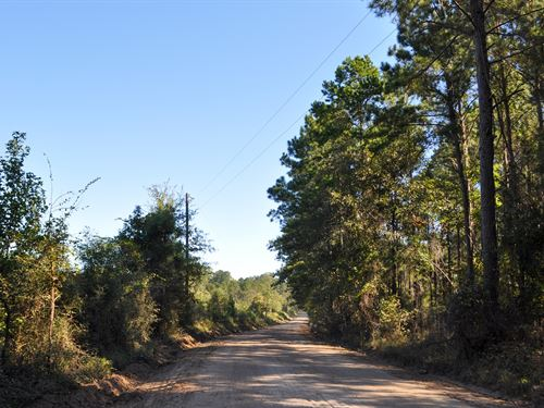 34 Acres Close Proximity To Lake : Huntington : Angelina County : Texas