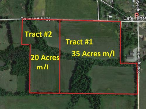55 Acre Hybrid Bermuda Farm : Paragould : Greene County : Arkansas
