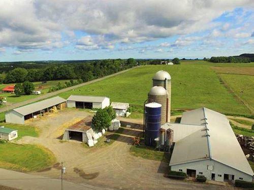 Well-Maintained Dairy Farm : Otisco : Onondaga County : New York