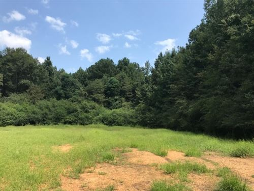 20 Acres On Hartwell Road In Pike : Summit : Pike County : Mississippi