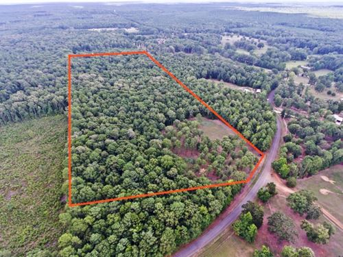 31 Acre Residential Timber Tract Be : Benton : Bossier Parish : Louisiana