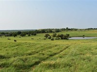 160 Farm And Ranch Footsteps Off : Randlett : Cotton County : Oklahoma