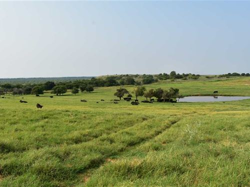 160 Farm And Ranch Footsteps Off : Randlett : Cotton County : Oklahoma