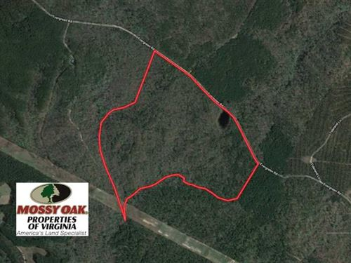 107 Acres of Hunting Land For Sale : Providence Forge : New Kent County : Virginia