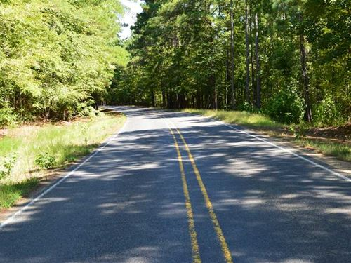 15.5 Acres Timber And Hunting Land : Kilmichael : Montgomery County : Mississippi