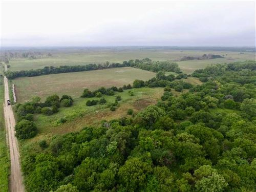 80 Acres of Excellent Hunting : Little River : Rice County : Kansas