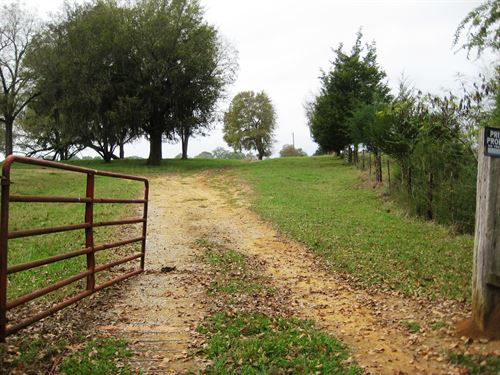 Hope Hull - 190 +/- Acres : Hope Hull : Montgomery County : Alabama