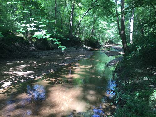 Beautiful Beaverdam Creek : Washington : Wilkes County : Georgia