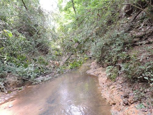 48.59 Ac On Corinth Road : Hogansville : Troup County : Georgia