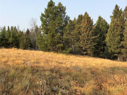 Priced To Sell : Anaconda : Granite County : Montana