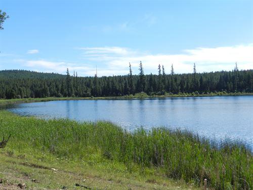 Island Lake Retreat : Kalispell : Lincoln County : Montana