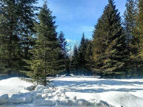 Fox Lane Recreation : Trout Creek : Sanders County : Montana