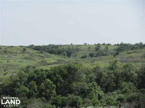 Osborne Hunting And Cattle Ranch : Osborne : Kansas