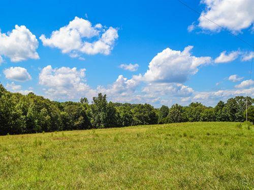 16.8 Acre Mini-Farm Near Moore : Woodruff : Spartanburg County : South Carolina
