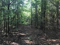 Large Acreage Unrestricted Tract : Sanford : Chatham County : North Carolina