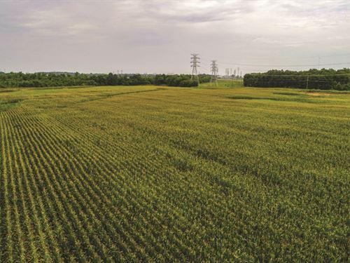 Auction Development & Ag Land : Trinity : Morgan County : Alabama