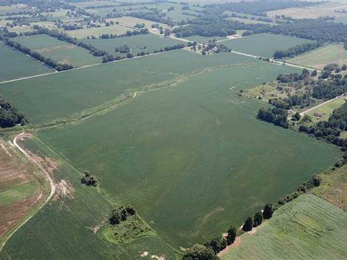 185.84 Acre Farm For Sale in Phill : Lexa : Phillips County : Arkansas