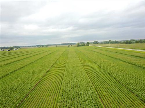 40 Acres Tillable in Starke County : Knox : Starke County : Indiana