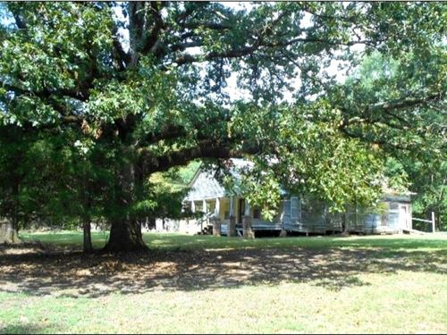 250.3 Acres In Choctaw County : French Camp : Choctaw County : Mississippi