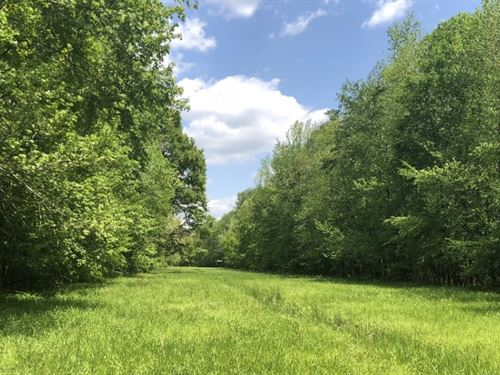 150 Acres In Lafayette County In Ox : Oxford : Lafayette County : Mississippi