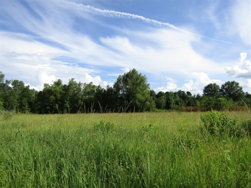 41 Acres In Hinds County In Jackson : Jackson : Hinds County : Mississippi