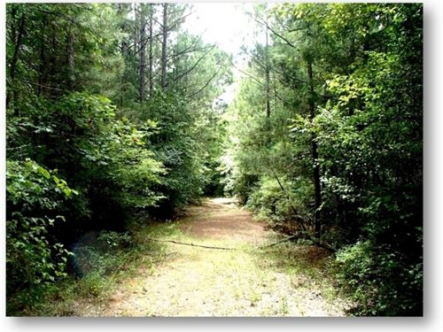 69 Acres In Choctaw County : Ackerman : Choctaw County : Mississippi