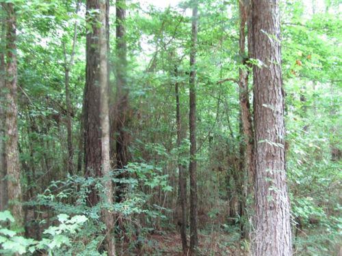 23 Acres In Franklin County : Eddiceton : Franklin County : Mississippi