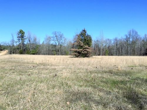 Nice Pasture For Your Dream Home : De Kalb : Bowie County : Texas