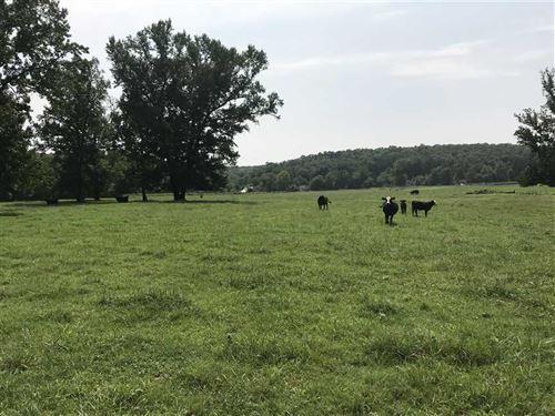 Reduced Price, 105.20 Acres in : Shirley : Van Buren County : Arkansas