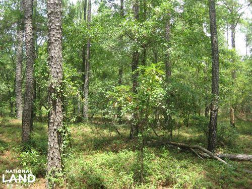 Fairview Crossroads Homesite And Ti : Pelion : Lexington County : South Carolina