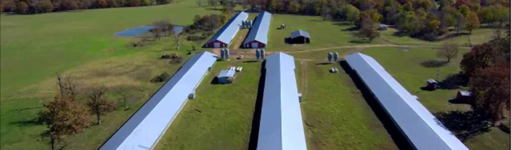 Motivated Seller, $200K+ Avrg Gross : Gentry : Benton County : Arkansas