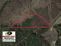 Reduced, 10.3 Acres of Residentia : Moncure : Chatham County : North Carolina