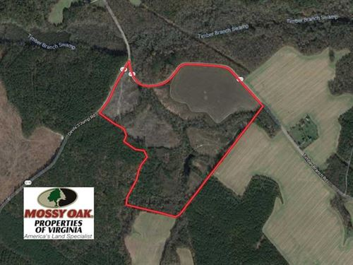 109 Acres of Hunting Land For Sale : Dragonville : King And Queen County : Virginia