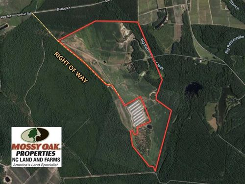 Reduced, 280.2 Acres of Farm : Ivanhoe : Pender County : North Carolina