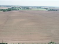 612 Acres Offered Multiple Tracts : Norwich : Kingman County : Kansas