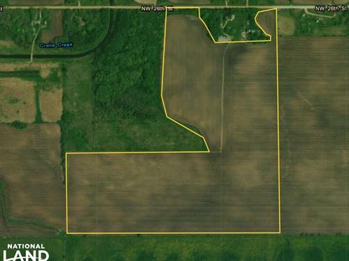 Farmland, Investment Opportunity : Owatonna : Steele County : Minnesota