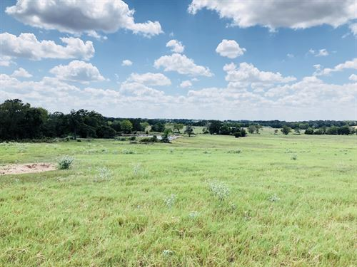 36 Acres With 4 Ponds : Thorndale : Milam County : Texas