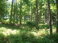 187 Acres, Elderon WI : Elderon : Marathon County : Wisconsin