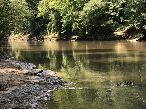 168 +/- Acres On Conecuh River : Andalusia : Covington County : Alabama