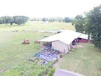 74 +/- Acres Working Farm W Home : Banks : Pike County : Alabama