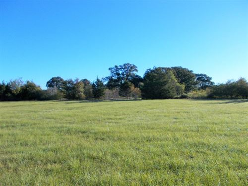 43+ Acres Of Prime Pasture : New Boston : Bowie County : Texas