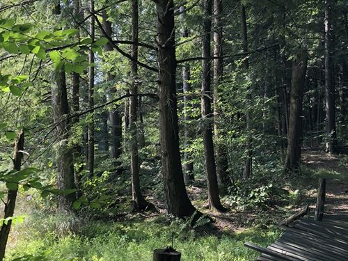 Southern Adirondacks : Forestport : New York County : New York
